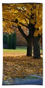 Maple And Arborvitae Beach Towel