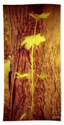 Maple Branch Growing From Trunk Beach Towel
