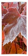 Maple Frost  Beach Towel