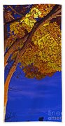 Maple In The Night Beach Towel