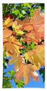 Maple Mania 1 Beach Towel