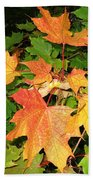 Maple Mania 10 Beach Towel