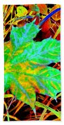 Maple Mania 21 Beach Towel