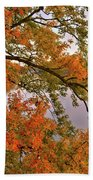 Maple Over The River Beach Towel