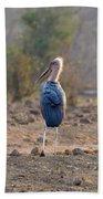 Marabou Stork Of Botswana Africa Beach Towel
