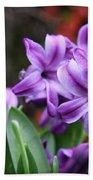 March Hyacinths Beach Towel