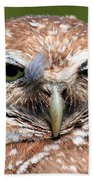 Marco Burrowing Owl - I Know What You're Thinking Beach Towel