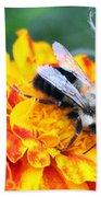 Marigold And The Bee Beach Towel
