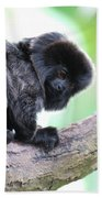 Marmoset Sitting Perched In A Tree Beach Towel