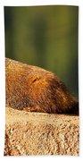 Marmot Life Beach Towel