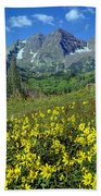 210403-v-maroon Bells And Sunflowers  Beach Towel