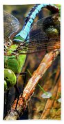 Married With Children Dragonflies Mating Beach Towel