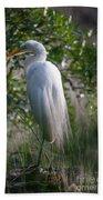 Marsh Heron Beach Towel