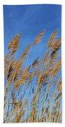 Marsh In The Wind Beach Towel