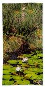 Marsh Waterlilies  Beach Towel