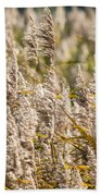 Marshes 3 Beach Towel
