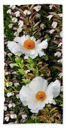 Matilija Poppies Beach Towel