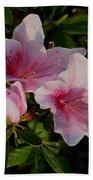 Maymont Flowers Beach Towel