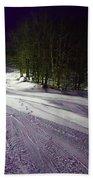 Mccauley Evening Snowscape Beach Towel