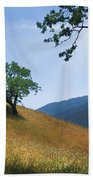 Meadow View Summer Beach Towel