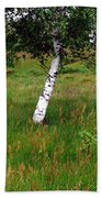 Meadow With Birch Trees Beach Towel