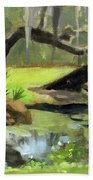 Meditative Swamp Beach Towel