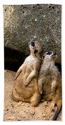 Meerkats Keeping An Eye Out Part 2 Beach Sheet