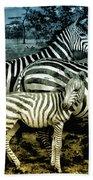 Meet The Zebras Beach Towel