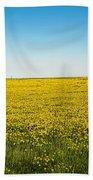 Mello Yellow Beach Sheet