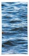 Merganser Pair Beach Towel