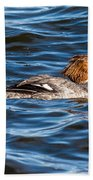 Merganser Beach Towel