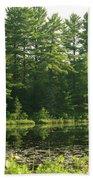 Mew Lake Algonquin Park Beach Towel