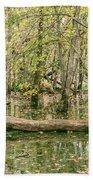 Michigan Swamp Beach Towel