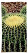 Mickey Mouse Barrel Cactus Beach Towel