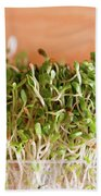 Micro Green Beach Towel