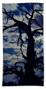 Midnight Blue  Beach Towel