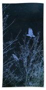 Midnight Flight Silhouette Blue Beach Towel