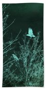 Midnight Flight Silhouette Teal Beach Towel