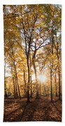Midwest Forest Beach Towel