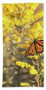 Migrating Monarch Butterfly Moses Cone Memorial Park North Carolina Beach Towel