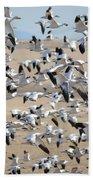 Migrating Snow Geese Beach Towel