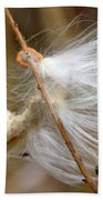 Milkweed Feathers Beach Towel