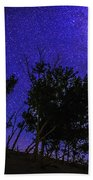 Milky Way And Silhouette Trees At Bruneau Dunes State Park Idaho Beach Towel