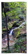 Mill Creek Falls Beach Towel