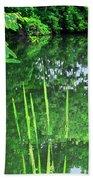 Mill Pond Reflections Beach Towel