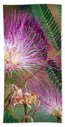 Mimosa's First Blooms Beach Towel