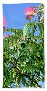 Mimosas In The Sky Beach Towel