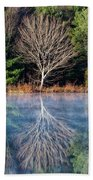 Mirror Mirror On The Pond Beach Towel
