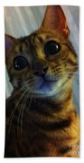 Mischievous Bengal Cat Beach Towel