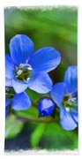 Missouri Wildflowers 5  - Polemonium Reptans -  Digital Paint 1 Beach Towel